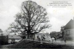 Nampcelles-la-Cour